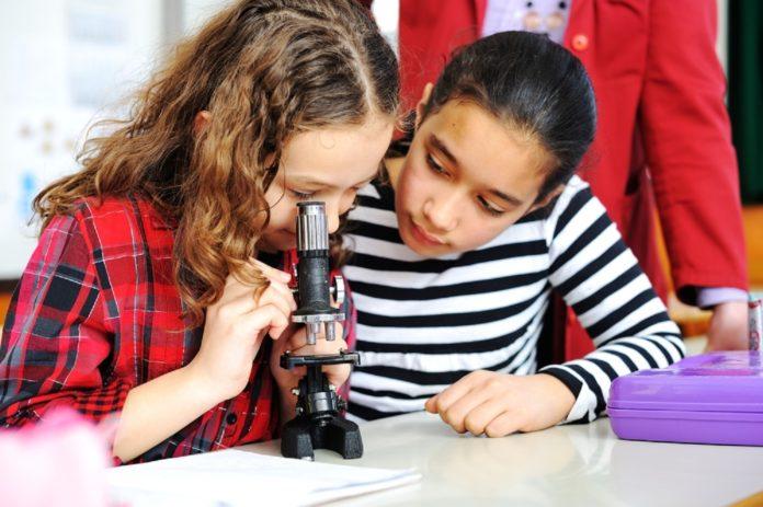 educação científica no Ensino Médio