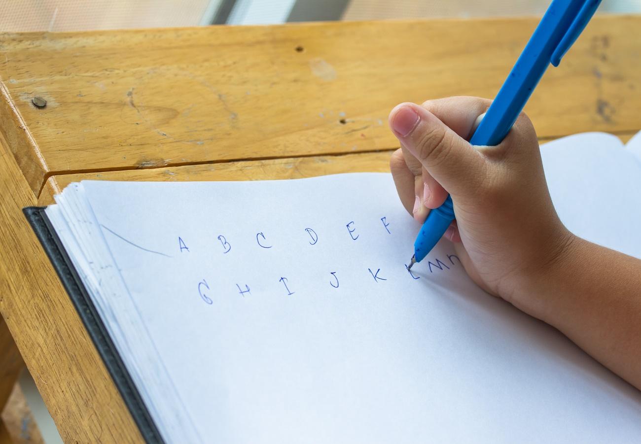 descobertas da neurociência sobre a alfabetização