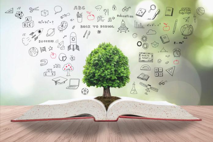 Como transformar a educação?